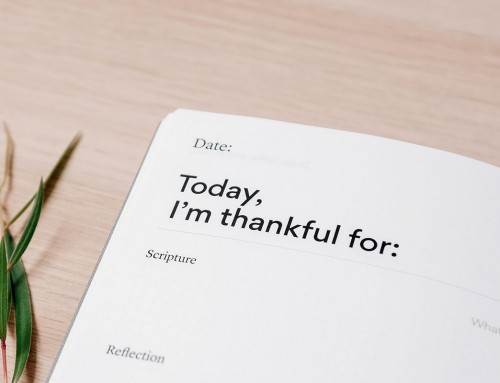 Today I Am Thankful For…