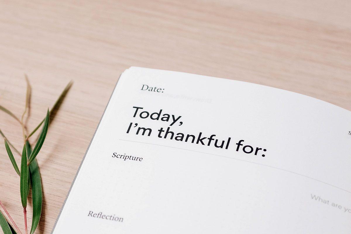jan-ibbott-business-growth-stragegy-today-I'm-thankful-for